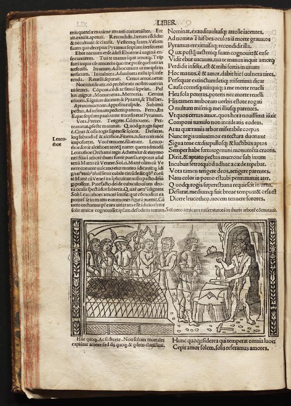 Metamorphosis P. Ouidii ; cum luculentissimis Raphaelis Regii enarrationibus ... Iacobi Musaei Foroiuliensis Ad lectorem Carmen.